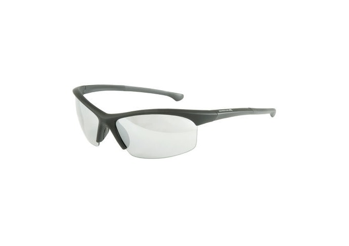 ENDURA Stingray Glasses click to zoom image